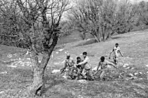عملیات نامنظم فتح 5(گنجینه تصاویر ضیاءالصالحین)