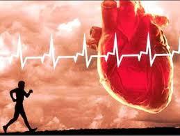 اهمیت ورزش در سلامتی قلب