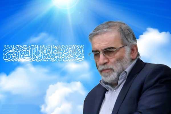 شهیدی که صندوقچه اسرار برنامه هسته ای ایران بود