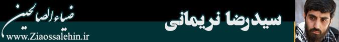 مداحی شهادت حاج قاسم سلیمانی از سید رضا نریمانی