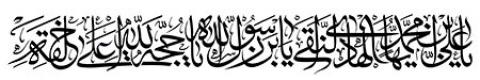 یا علی بن محمد ایها الهادی النقی یا بن رسول الله یا حجه الله علی خلقه