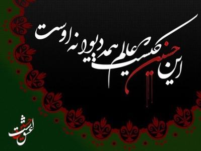 تصاویر روز چهارم محرم : طفلان زینب علیهاالسلام