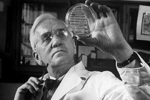 الکساندر فلمینگ,Sir Alexander Fleming,گنجینه تصاویر ضیاءالصالحین