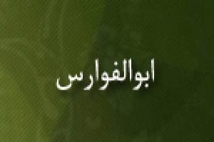 مجدالدین ابوالفوارس(گنجینه تصاویر ضیاءالصالحین)