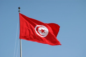 تونس,پرچم تونس,گنجینه تصاویر ضیاءالصالحین