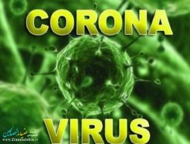 ویروس کشنده کرونا