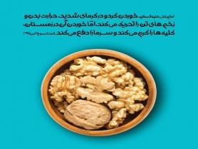 خواص خوردن گردو در تابستان و زمستان