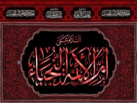 بنر ایام فاطمیه/ السلام علی ام الائمه النجباء