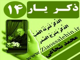 مباحث ذکر یار استاد محمد شجاعی/ جلسه 14 - ذکر؛ نور و رشد و فراموشی؛ فقدان