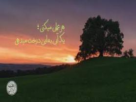 آیت الله حائری شیرازی